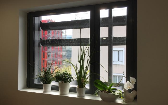 Photo fenêtre MYE