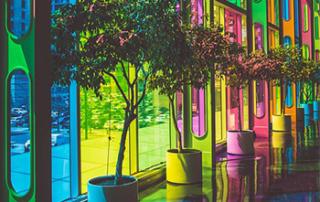 films fenêtres reflectiv